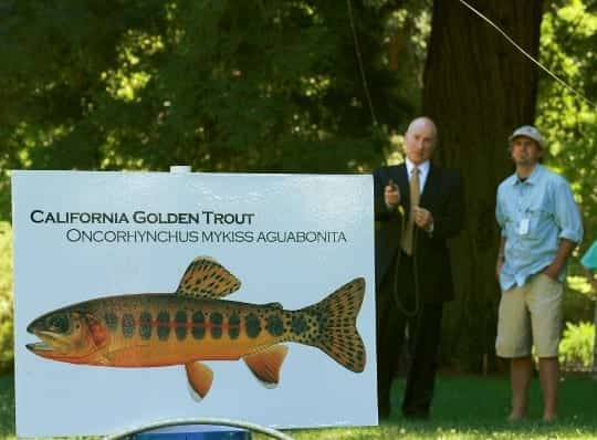 The 2012 CalTrout/TU Casting Call