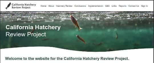 California Hatchery Review Site