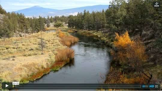 Shasta River video screenshot