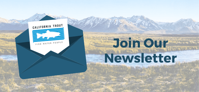 Sign up for our newsletter(1)