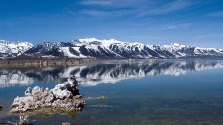 CalTrout I Saves Mono Lake Tributaries