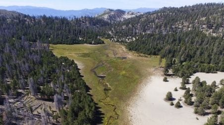Sierra Meadows Partnership Created to Restore and Protect Source Water Areas