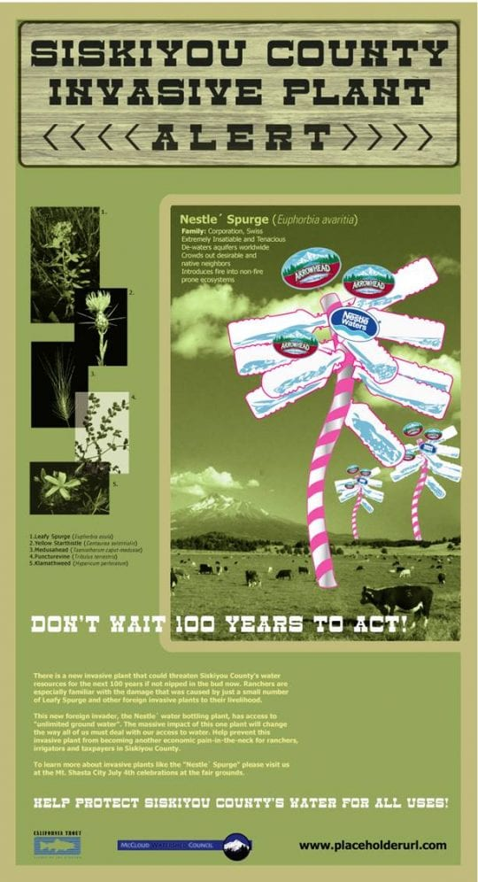Nestle Invasive Plant image